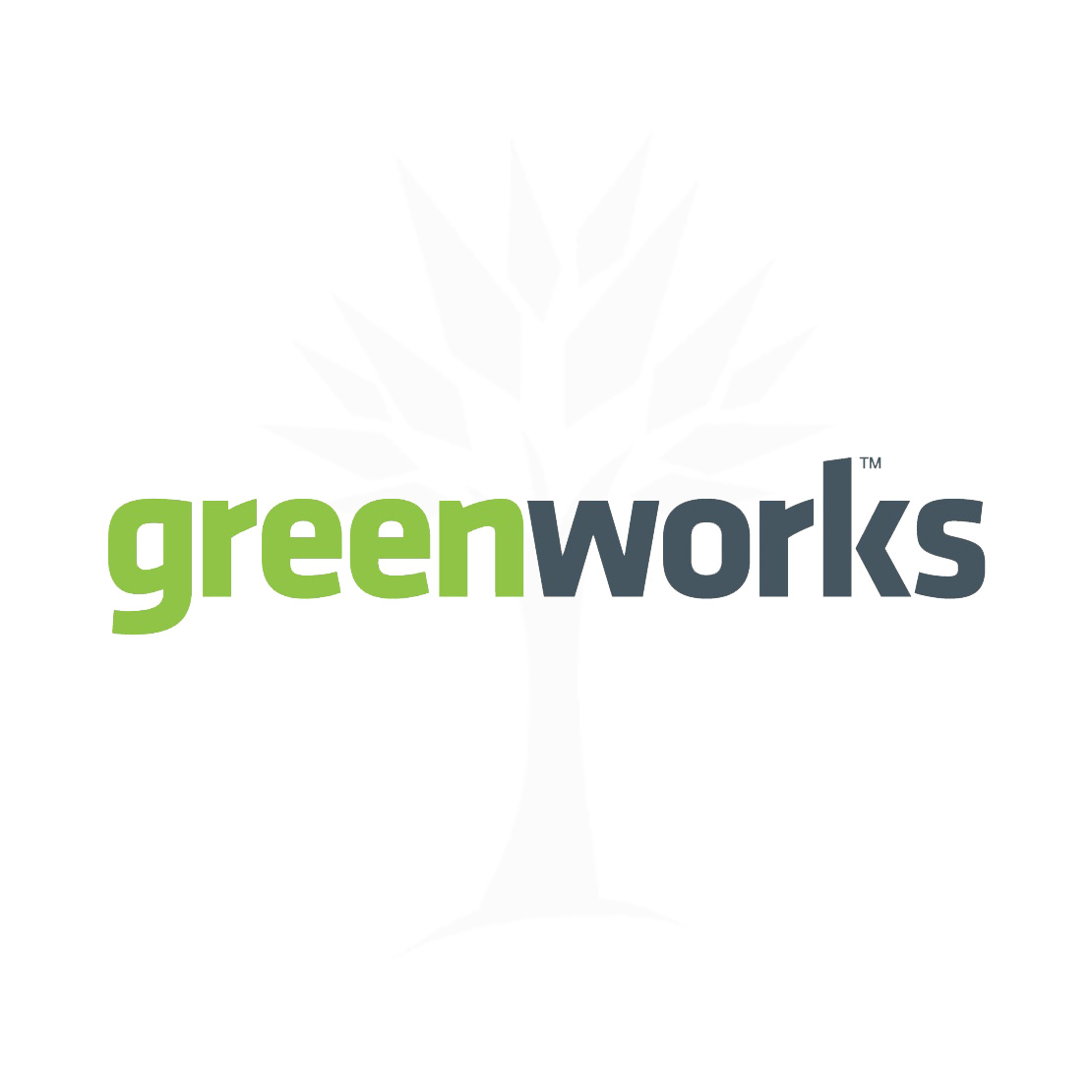GreenWorks 40V 2.0Ah G-MAX Li-Ion Battery  29462